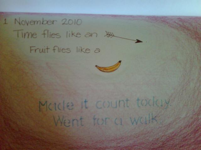 Time flies like an arrow. Fruit flies like a banana. ~ Groucho Marx
