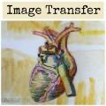 Image Transfer Grace Mendez